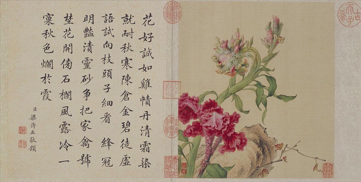 清 郎世宁 工笔重彩花卉册作品欣赏