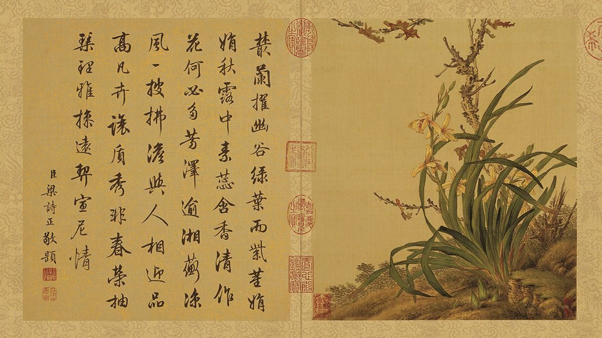 清 郎世宁 花鸟图册 3-22张作品欣赏