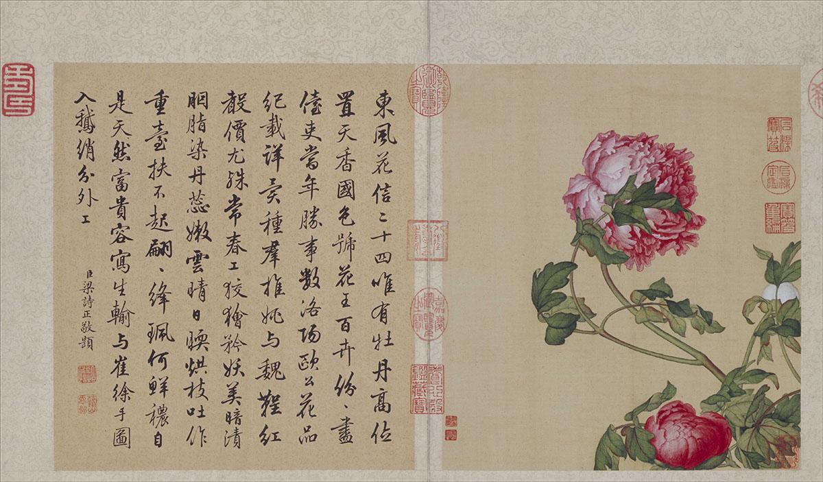 清 郎世宁 款 花鸟图册10张作品欣赏