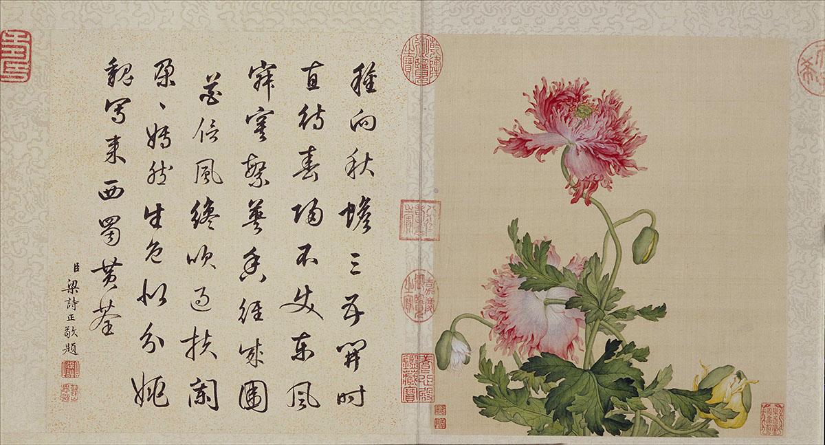 清 郎世宁-花鸟图册10张作品欣赏