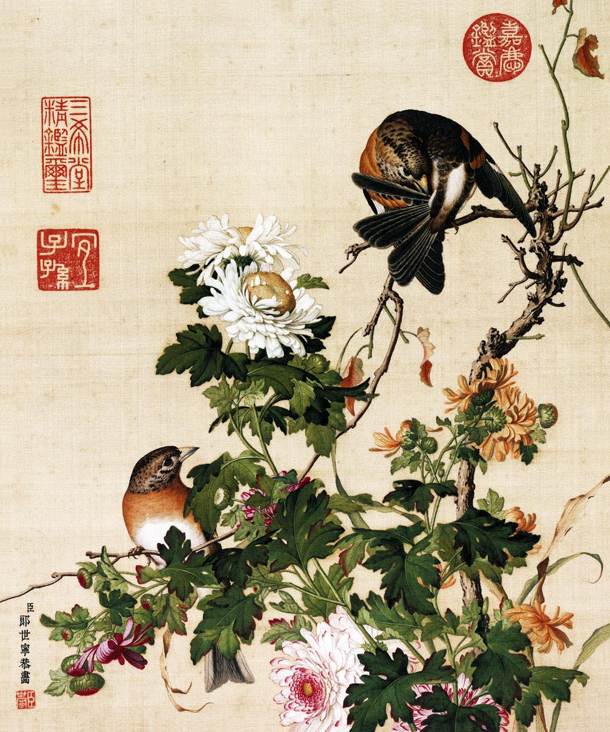 郎世宁 仙萼长春图最佳版作品欣赏